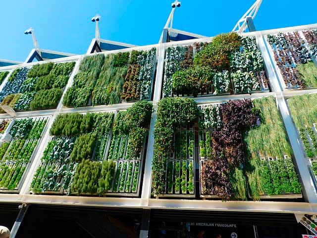 jardin vertical, muro vegetal
