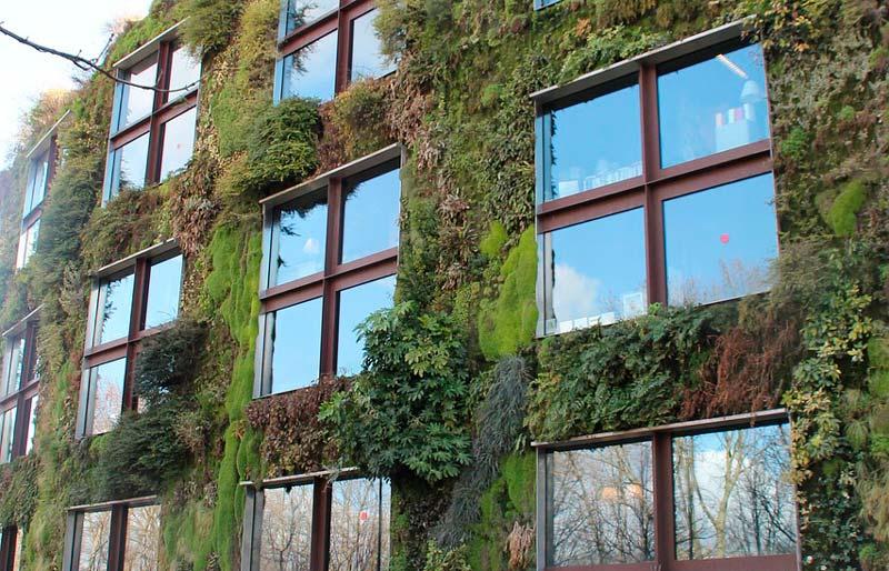 Los Jardines Verticales Son Muros Recubiertos De Plantas Y