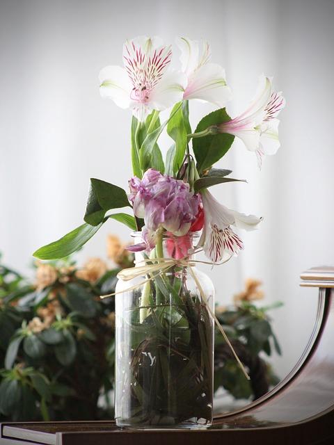 plantas en jarrones de agua