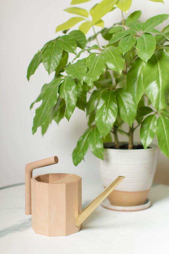Cómo regar las plantas